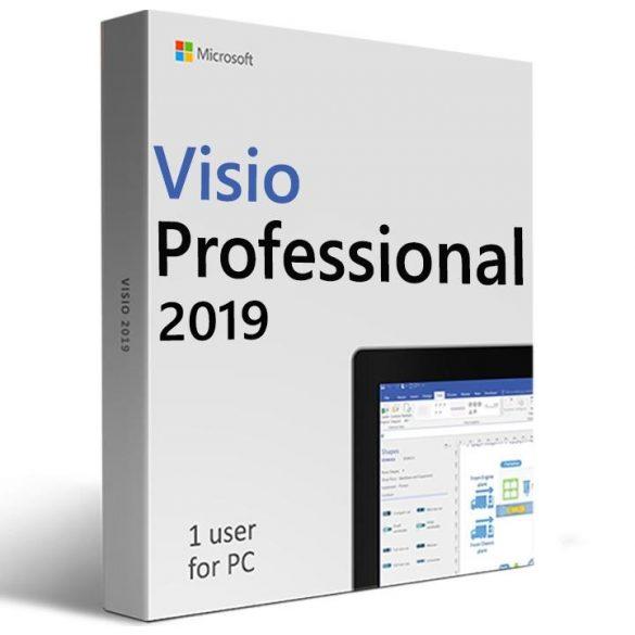 Microsoft Visio Professional 2019 D87-07425