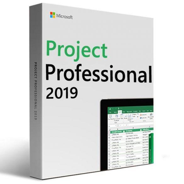 Microsoft Project Professional 2019 H30-05756