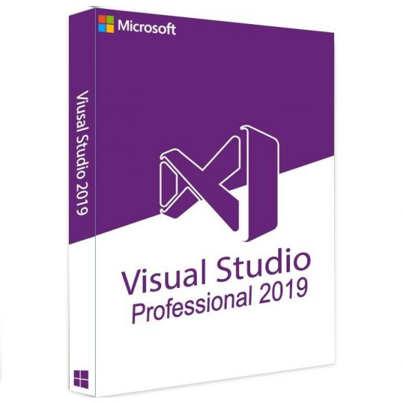 Visual Studio Professional 2019 C5E-01380